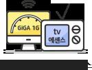 최대 1G + tv 에센스