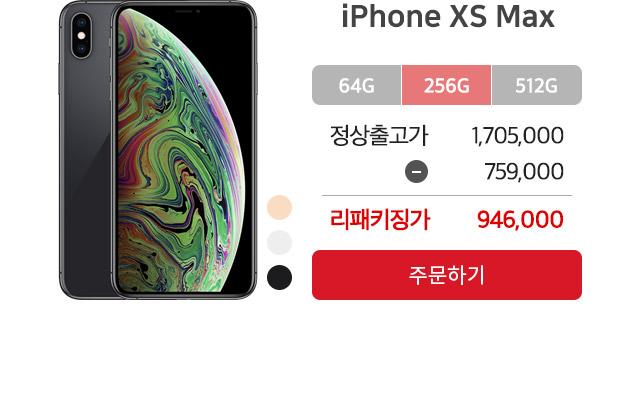 아이폰xs max 256GB