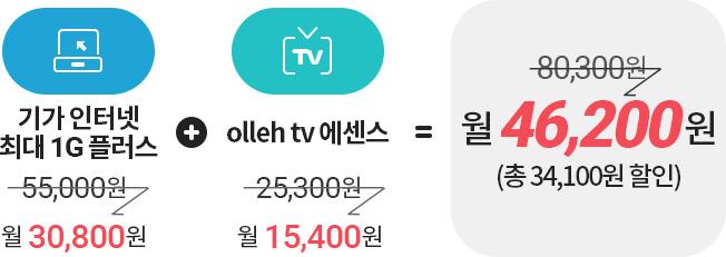 기가 인터넷 최대 1G 플러스 : 월55,000원(할인금액 월30,800원) + olleh tv 에센스 : 월25,300원(할인금액 월15,400원) = 80,300원 할인금액:월46,200원 (총34,100원 할인)